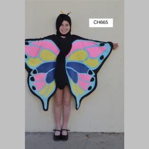 ButterflyCH665_t