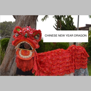 chinese dragon_t