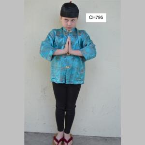 ChineseCH795_t