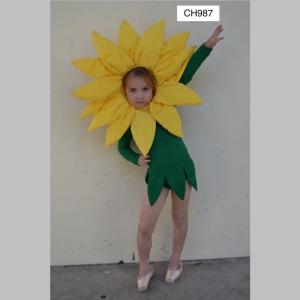 FlowerCH987_t