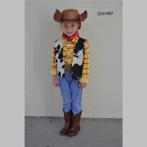 WoodyToyStoryCH1497_t